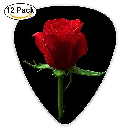 Amazon.com: Púas para guitarra (tamaño mediano, 12 unidades ...