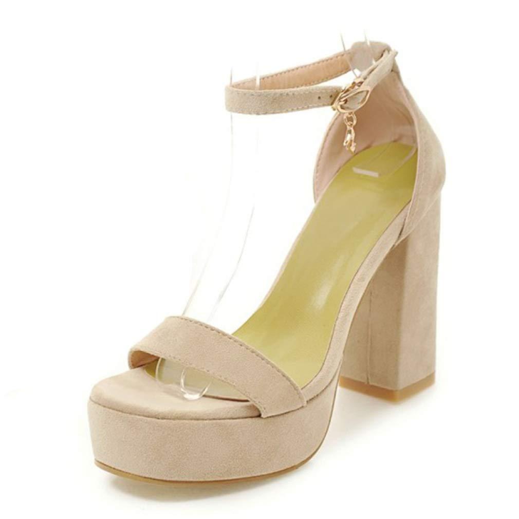 Beige MEIZOKEN Women's Chunky Heel Platform Sandal Comfort Open Toe Ankle Strap High Heel Pump Party Sandals