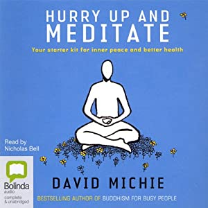 Hurry Up and Meditate Audiobook