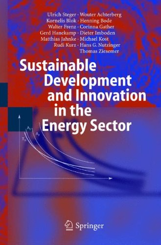 Sustainable Development and Innovation in the Energy Sector PDF