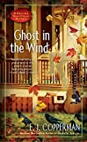 download ebook ghost in the wind (a haunted guesthouse mystery) pdf epub
