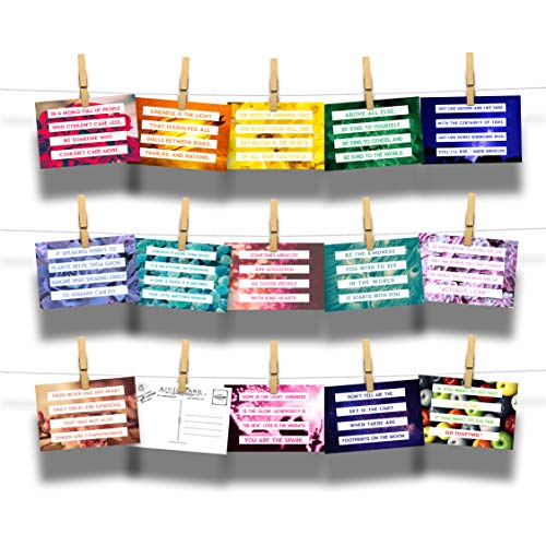 True Colors Series Kind Cards Postcard 14-Pack Assortment - Collection of Encouraging Kindness Inspirational Postcards ()