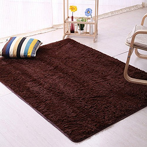 Play Red Carpet (DODOING 3-5 Days Delivery Wine Red Super Soft Indoor Shaggy Fluffy Rugs Anti-Skid Area Rug Dining Room Carpet Home Bedroom Floor Mat,120cmx160cm(47.2x62.9 inch))