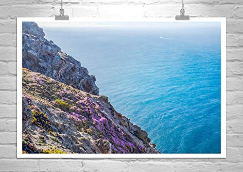 Point Reyes Marin County California Coast Art Print