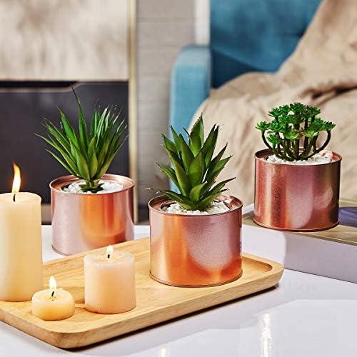 Artificial Succulent Plants for Women Desk – Fake Succulent Plant Set – Office Decor Faux Succulents in Rose Gold Pots – Mini Succulent Decor for Bedroom Bathroom Bookshelf Dorm Accessories 3-Pack 51QbHQAArmL