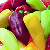 Pretty N Sweet Bell Pepper Seeds 150 Seeds Upc 643451295986