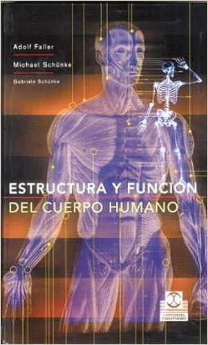 Estructura Y Función Del Cuerpo Humano Cartoné Y Color