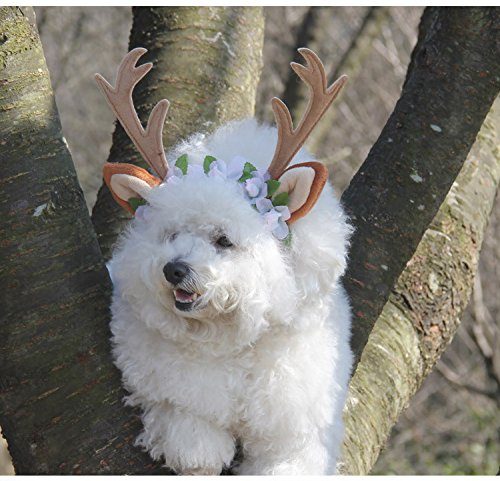 Pets Headband, Halloween Costumes Holiday Christmas Antlers for Pets Costume Adjustable Dogs and Cats (Medium) (Spirit Halloween Pet Costumes)