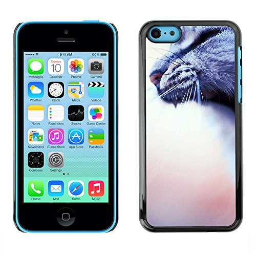 Ziland / Premium Slim HD plastique et d'aluminium Coque Cas Case Drapeau Cover / Cat Grey House Blurry Peach / Apple iPhone 5C