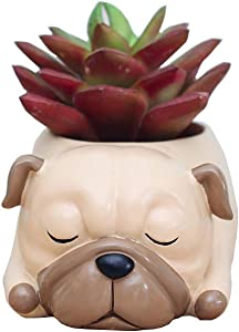 Youfui Cute Dog Flowerpot Resin Succulent Planter Desk Mini Ornament (Pug)