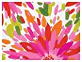Bright Flowers Daisies Elegant Gift Wrap Wrapping Paper - 24 Inches x 15 Feet Roll
