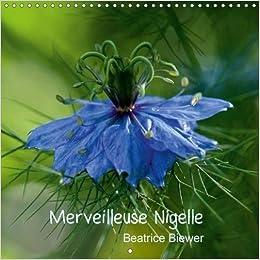 Amazon Com Merveilleuse Nigelle 2018 Une Merveilleuse Petite Fleur