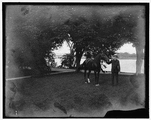 Photo: Mr William Livingstone,horse,men,animals,Rio Vista,Grosse Ile,Michigan,MI,1900