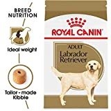 Royal Canin Labrador Retriever Adult Breed Specifi...