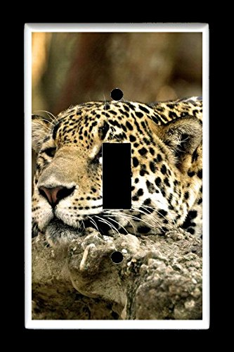 Single Toggle (1-toggle) Light Switch Plate Cover - African Wildlife Safari Animals - Africa Leopard