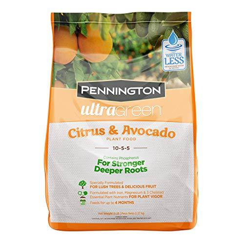 (Pennington 100525941 UltraGreen Citrus & Avocado 10-5-5 Plant Food, 5 lb)