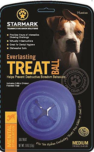 STARMARK PET PRODUCTS-Everlasting Treat Ball- Blue Medium/1 Pack