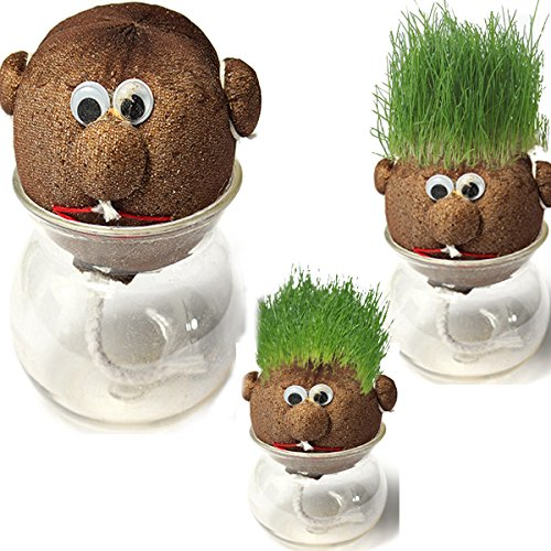 CoCocina Mini Diy Magic Grass Plant Pot Grass Head Doll Indoor Potted Plant