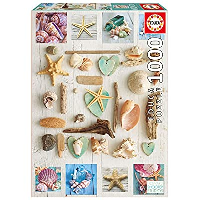 Educa 17658 1000 Sea Shell Collage: Toys & Games