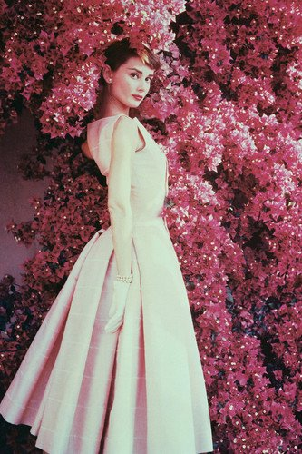 ont of Wall of Flowers 24x36 Poster (Actress Audrey Hepburn)