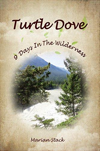 Turtle Dove: A Lesbian Romance (Stack Turtle)