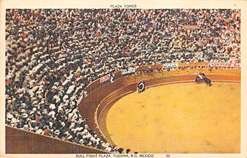 Plaza Toros, Bull Fight Plaza Tarjeta Postal Bullfighting ...
