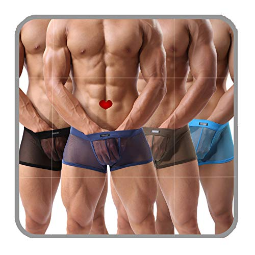 Men's Boxers Sexy Underwear Mesh Breathable Gay low rise boxer briefs(36Hei,XL)(Pack of 4)