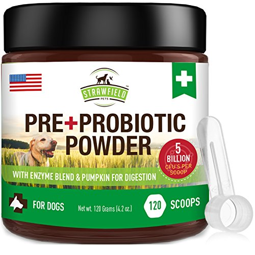 Probiotics for Dogs Digestive Probiotics