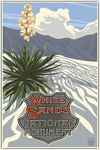 White Sands National Monument New Mexico Metal Art Print By Paul A  Lanquist  12  X 18