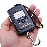 Fish Scales, Hinmay Portable LCD Digital Hanging Luggage Scale, 88lb/40kg C ....