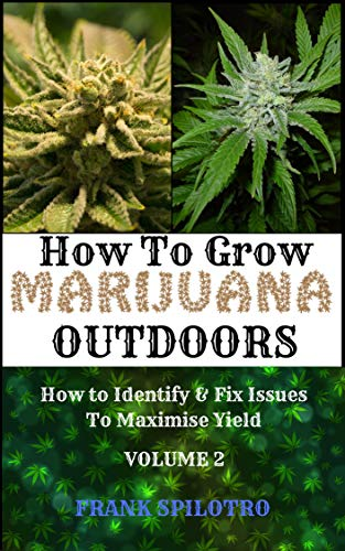 HOW TO GROW MARIJUANA OUTDOORS: How to Identify  AND  Fix Issues To Maximise Yield
