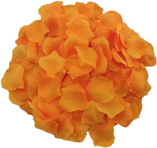 Orange Real Rose Petals Biodegradable Confetti Natural Rose Aisle Table Decor