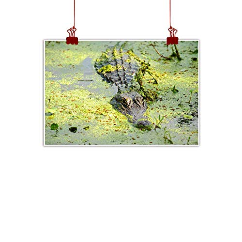 - duommhome Modern Frameless Painting Alligator Covered with Duck Weed Natural Art 32