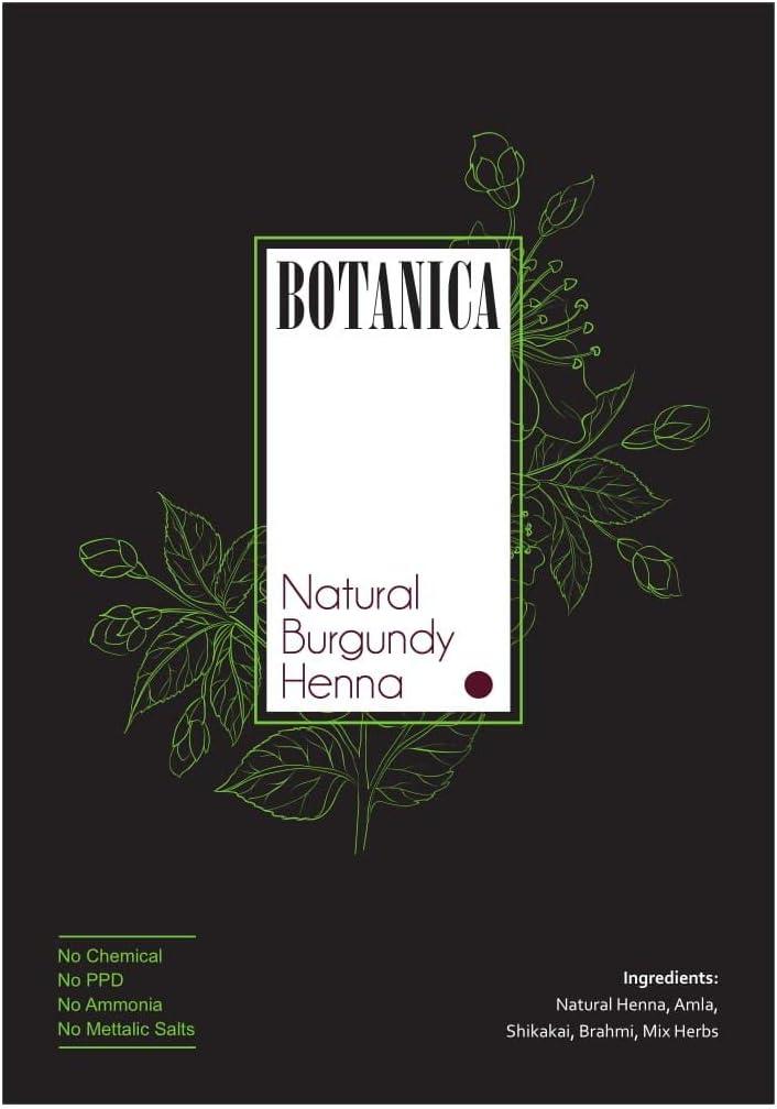 Botanica Henna - Juego de 3 cepillos de tinte para el pelo ...