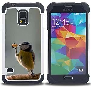- funny cute bird dancer winter sweet - - Doble capa caja de la armadura Defender FOR Samsung Galaxy S5 I9600 G9009 G9008V RetroCandy