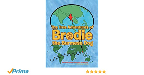 The True Adventures of Brodie the Burmese Dog