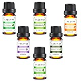 Aromatherapy Top 6 Essential Oils, TASEYAR 100% Pure Therapeutic Grade Aromatherapy Scented Oil (Lavender, Tea Tree, Eucalyptus, Peppermint, Lemongrass and Sweet Orange), 10ml/Each,Valentine's Gift