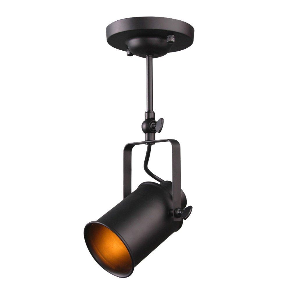 LALUZ Mini Adjustable Track Lighting Ceiling Light Spotlight Track Lights