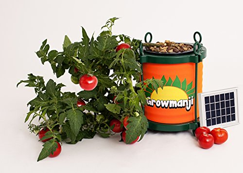 Growmanji Solar Powered Hydroponic System DWC, Complete Gardening Kit, Nutrients, Solar Powered Aerator, Germination Cubes and Tray Included. Grow Vegetables,Herbs, Flowers Soil Free.Grow Anything! (Best Nutrients For Dwc System)