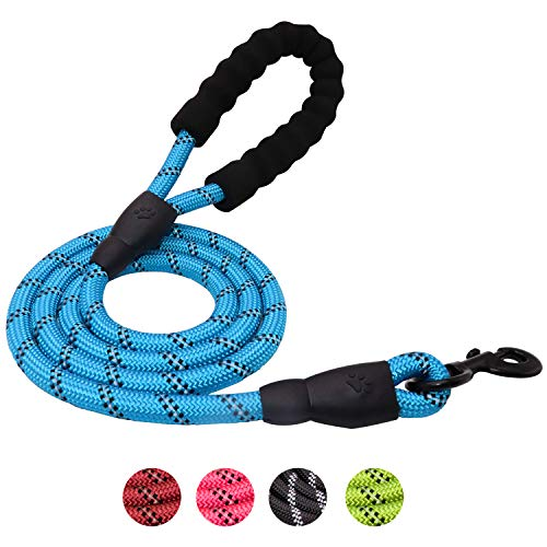 TagME 5 FT Rolled Dog Leash, Soft Padded Handle, Strong Rock Climbing Rope, Highly Reflective Threads, Blue