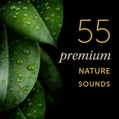 55 Premium Nature Sounds: Most Popular Nature Sound Effects On Earth