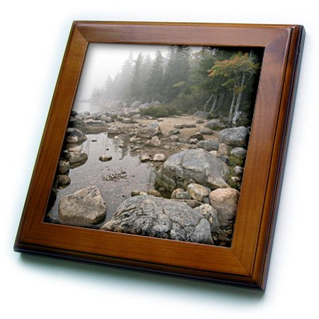 Acadia National Park Maine 3dRose ft/_90769/_1 Shore of Jordan Pond Framed Tile 8 by 8-Inch US20 RKL0014 Raymond Klass