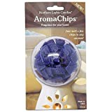 Northern Lights NLC 2-1/2-Ounce Chip Refill Pack, Glacier Mist