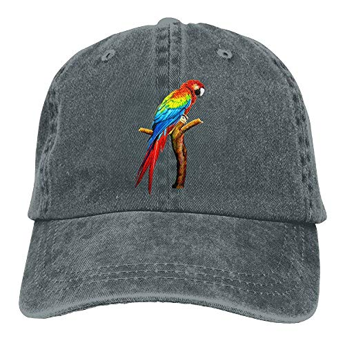 Parrot Denim Baseball Caps Hat Adjustable Cotton Sport Strap Cap for Men Women