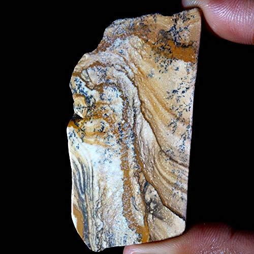 GEMSCREATIONS Picture Jasper Slab Natural Amazing Designer Rock Polished Rough 159.70Cts.