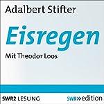 Eisregen | Adalbert Stifter