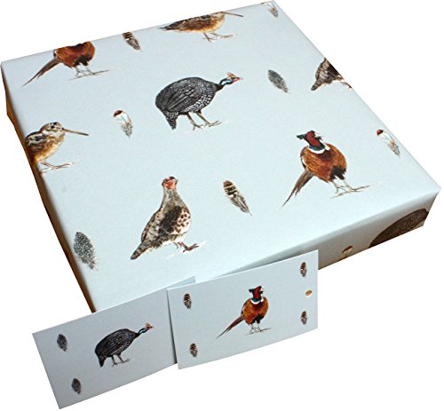 Re-wrapped - Blue Country Game Birds - 1 sheet (folded) with 2 matching swing tags of eco friendly recycled gift wrap wrapping paper - by UK designer Sophie (Sophie Ink)