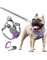 JdotMIN Harness for Dogs, No-Pull Dog Harness Small Medium, Adjustable Reflective Pet Harness with 2 Metal Clips, Easy Walk Soft Breathable Padded Dog Leash Set