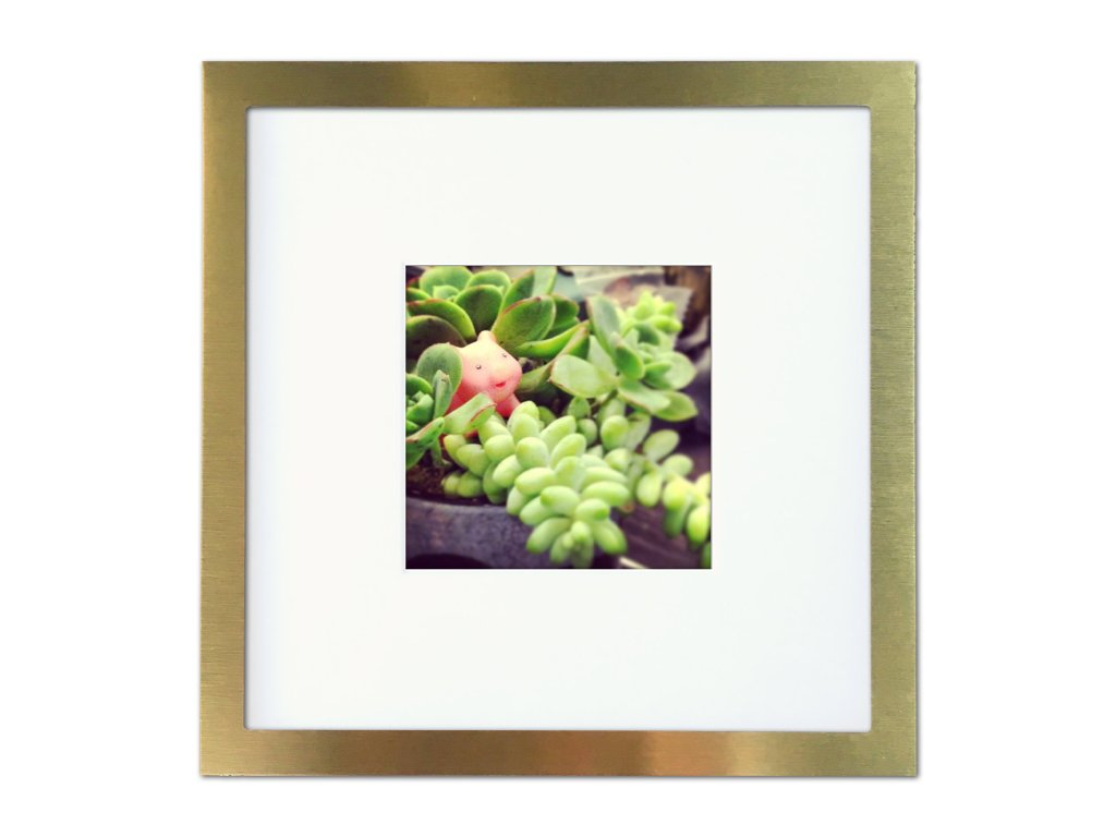 Tiny Mighty Frames - Brushed Metal, Square Instagram Photo Frame, 8x8 (4x4 Matted) (1, Gold) by Tiny Mighty Frames