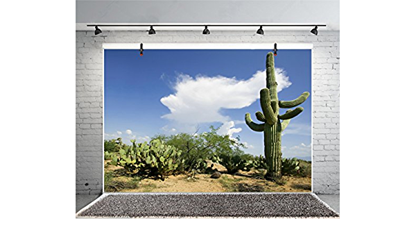 12x8FT Photography Background Mexico Cactus Backdrop Western Life Desert Plant Saguaro Dry Sand Grunge Bush Mountain Poor Rural Cowboy American Travel Photo Portrait Vinyl Studio Video Prop